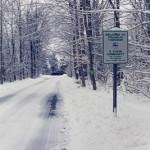 scenic_road